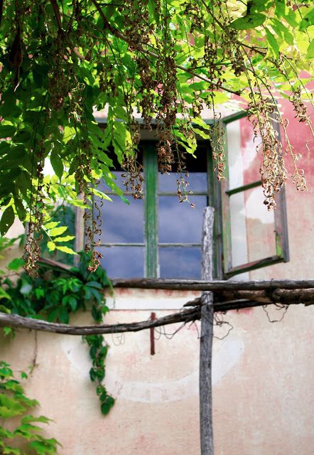 Alterazioni Viniliche - old windows