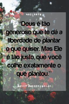 Deus é tão generoso que te dá a liberdade de plantar o que quiser. Mas Ele é tão justo, que você colhe exatamente o que plantou.