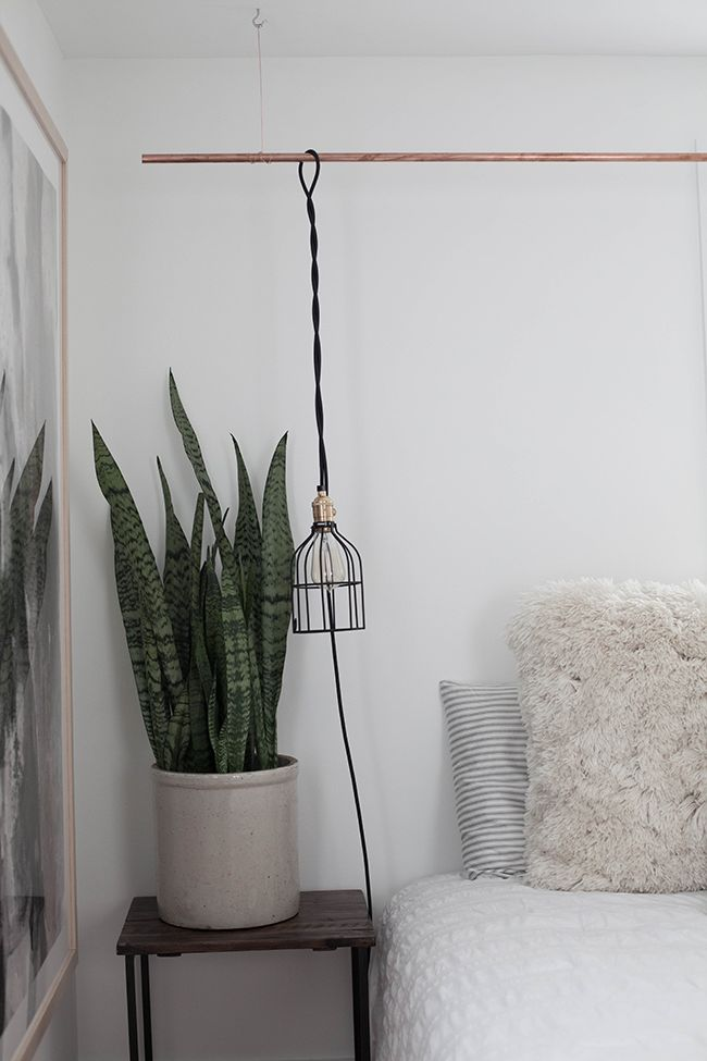 The perfect plant for the bedroom? The air-filtering, oxygen-producing Sansevieria - also known as the Snake Plant!
