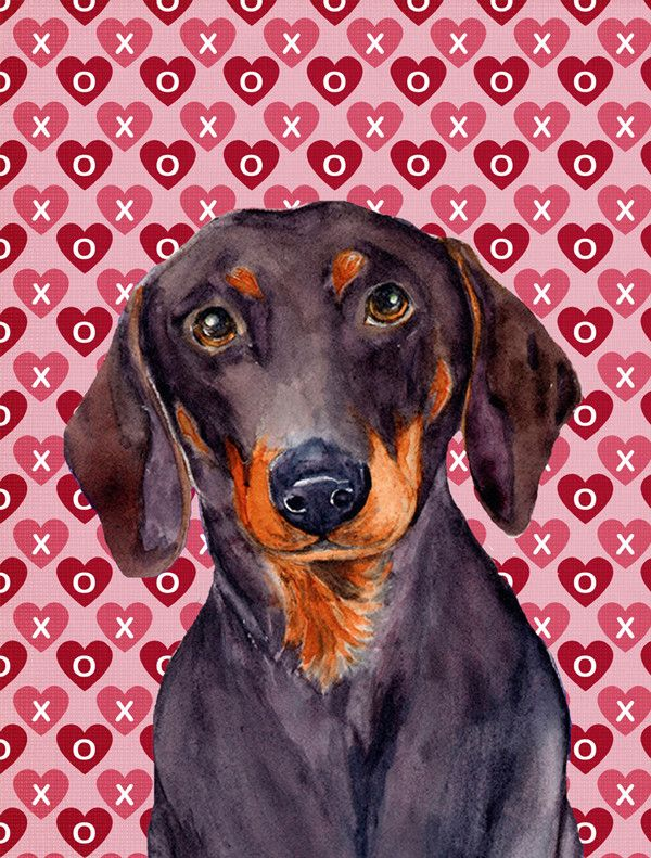 Dachshund Hearts Love And Valentineu0027s Day Portrait 2 Sided Garden Flag