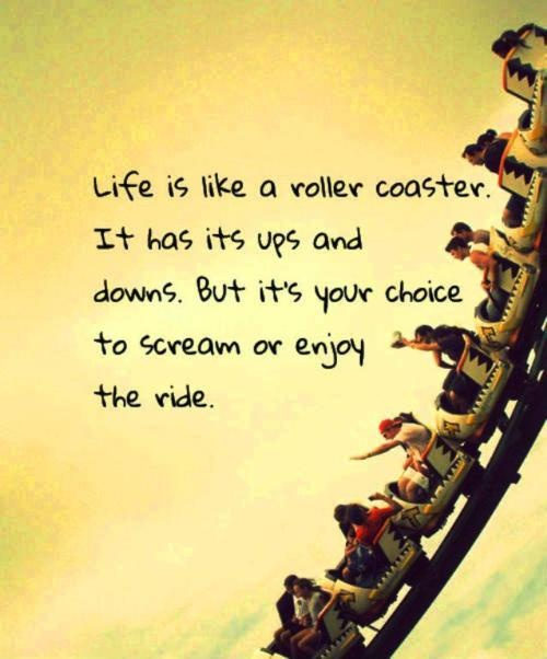 .: Life Quotes, Summer Adventure, Hold On, Hands, Sotrue, Rollers Coasters, Life Ha, So True, Inspiration Quotes