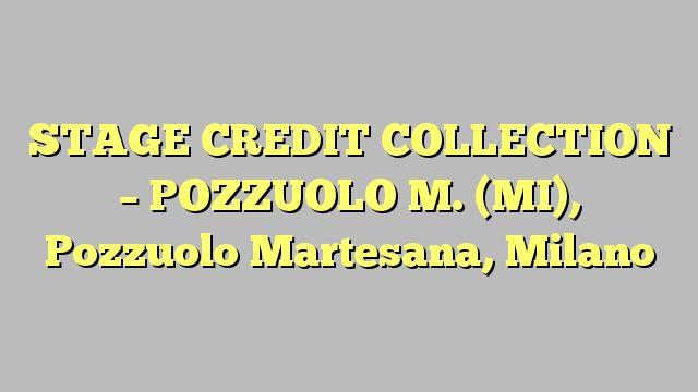 STAGE CREDIT COLLECTION - POZZUOLO M. (MI), Pozzuolo Martesana, Milano