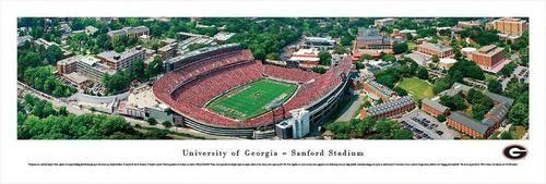 Georgia Bulldogs UGA Panoramic Photo Print