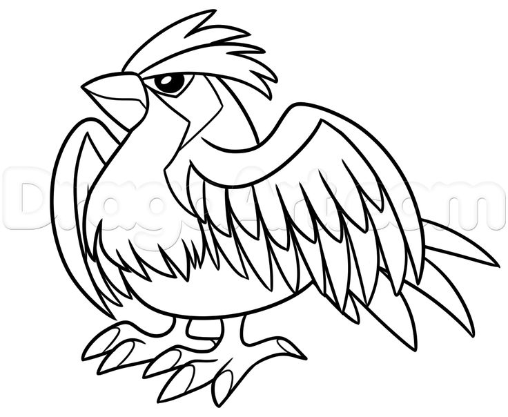 17 best images about drawing pokemon on pinterest for Pidgey coloring page