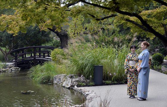 Japan kert (es zenelo kut)