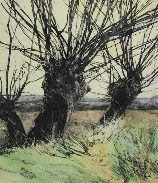 Mary Cossey : greenwich-printmakers