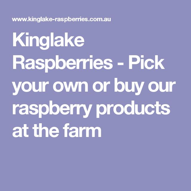 Kinglake Raspberries - Pick your own or buy our raspberry products at the farm