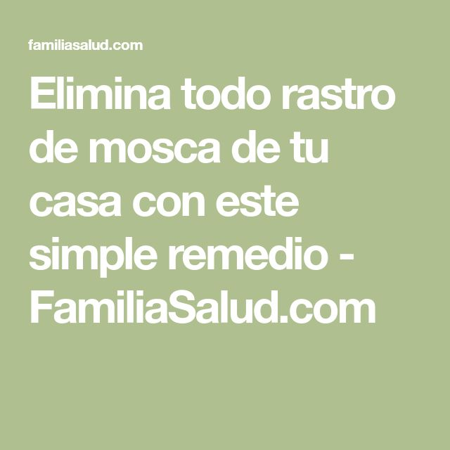 Elimina todo rastro de mosca de tu casa con este simple remedio - FamiliaSalud.com