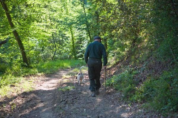 Fattoria Barbialla Nuova, white truffles, truffle hunting, hunt for truffles, truffles in Tuscany