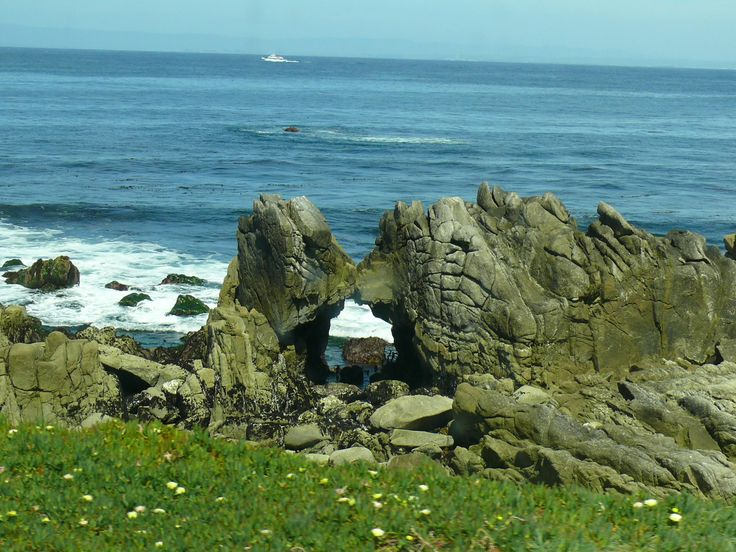 Kissing Rock in Pacific Grove, California