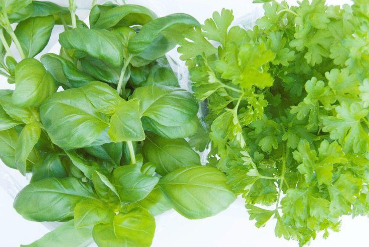 Groene Keuken Accessoires : Groene keukenkruiden als geneesmiddel! Kleine groene accessoires of