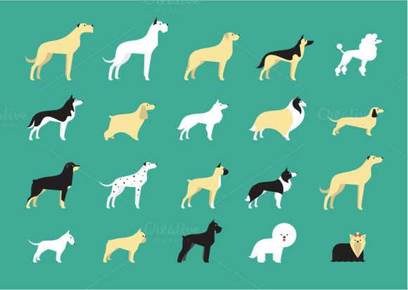 20 dog icons by vectorprro on Creative Market