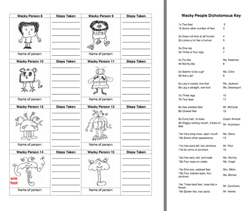 Dichotomous key worksheets free worksheets library for Dichotomous key template