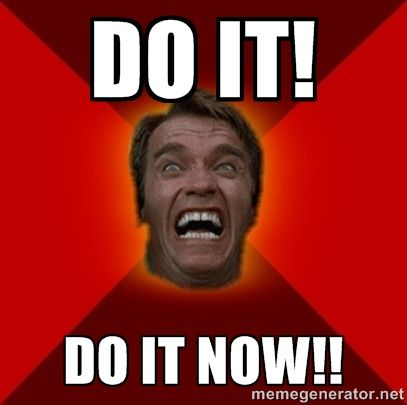 DO IT! DO IT NOW!! - Angry Arnold   Meme Generator