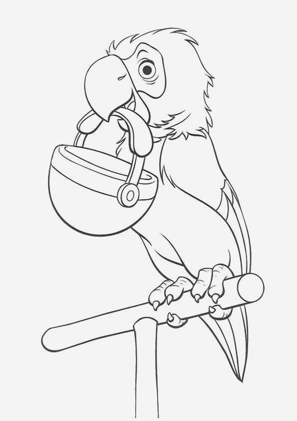 Coloriage De Perroquet A Imprimer Gratuit En 2020 Coloriage Animaux Coloriage Perroquet Coloriage