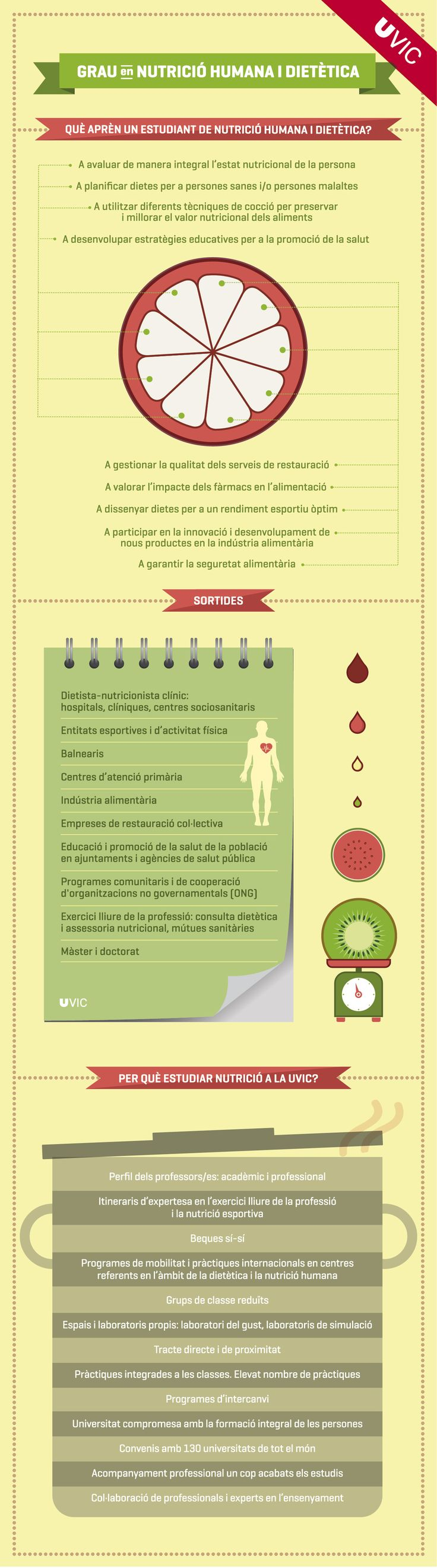 Infografia del Grau en Nutrició Humana i Dietètica. #grau #graus #Nutrició #Dietètica #infografia #estudis #universitat #uviclife #uvic #universitatdevic #salut