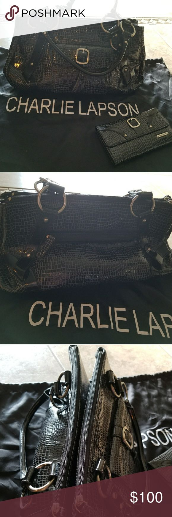 Charlie Lapson Handbag Black & gray Reptile embossed leather features 2 separate zippered compartments that are connected through a magnetic feature. The handles are uniquely designed to make this bag more stunning.  Gently worn twice. Like new!  Charlie Lapson is known for creating uniquely designed handbags for the stars! An exclusively made bag for formerly known Shop Nbc. Charlie Lapson Bags