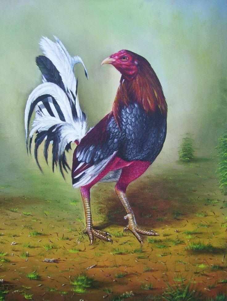 revista cientifica gallos de pelea | Cuadros Acuarela Pinturas Acrílico Pinturas Óleo Cuadros Vitrales
