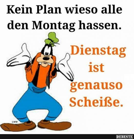 Kein Plan wieso alle den Montag hassen.. | Lustige Bilder, Sprüche, Witze, echt lustig – #alle #Bilder #den #echt #hassen