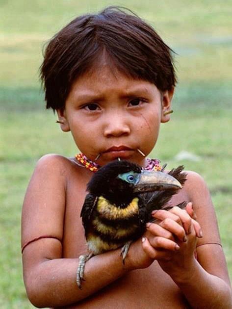 Nen de la tribu Yanomami, L'Amazònia.