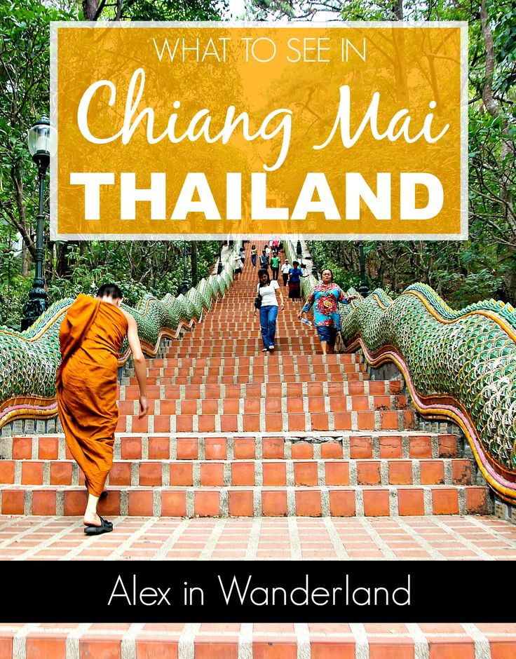 A few tips for great things to do in Chiang Mai and one tourist activity that should be avoided | Alex in Wanderland #SoutheastAsia #Thailand #travel