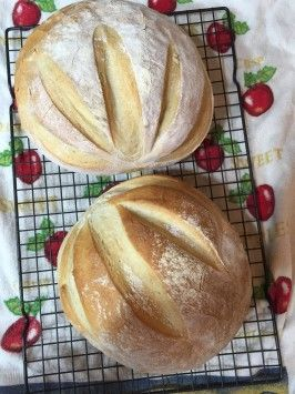 """""""Old Reliable"""" French Bread - just made my first loaf of real bread!  we'll see how it tastes...."""