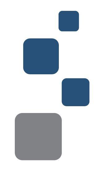 International Cargo System - Adecuación del formato de BL a las normas Internacionales