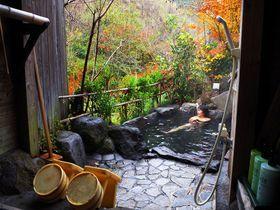 消毒無しの源泉かけ流しの温泉をこよなく愛する大阪在住の40代。特に好きな泉質は「アルカリ性の硫黄泉」。只今全国の温泉を時間の限り、温泉行脚を行う。サイト「源泉かけ流しどっとねっと」を主宰し、訪れた中で特にお気に入りの温泉を紹介。日本の温泉の本来の魅力をひとりでも多くの方にお伝えできればと。