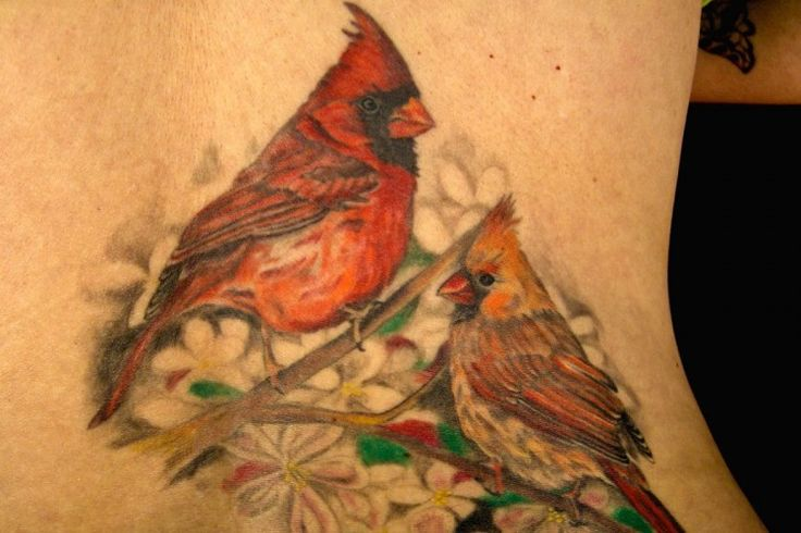 Cardinal Tattoo | Heidi's Tattoos - Pretty In Ink Tattoo