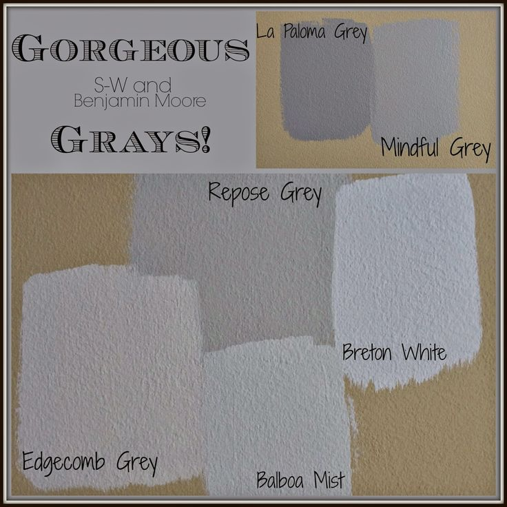 Picking paint colors green and grays by sherwin williams - Benjamin moore gray mist exterior ...