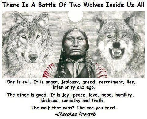 There Is A Battle Of Two Wolves Inside Us All