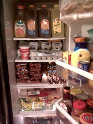 1000 Ideas About Chest Freezer On Pinterest Deep
