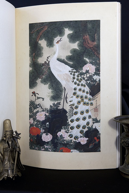 Jakuchu15 by MoonToad NL, via Flickr