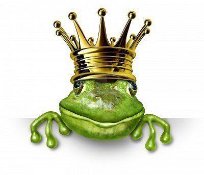 Frog King!