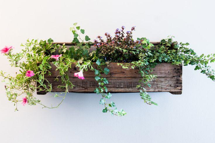 bloembak+balkon+tuin+plantenbak++bloemenbak+XL+van+Blommenbak+op+DaWanda.com