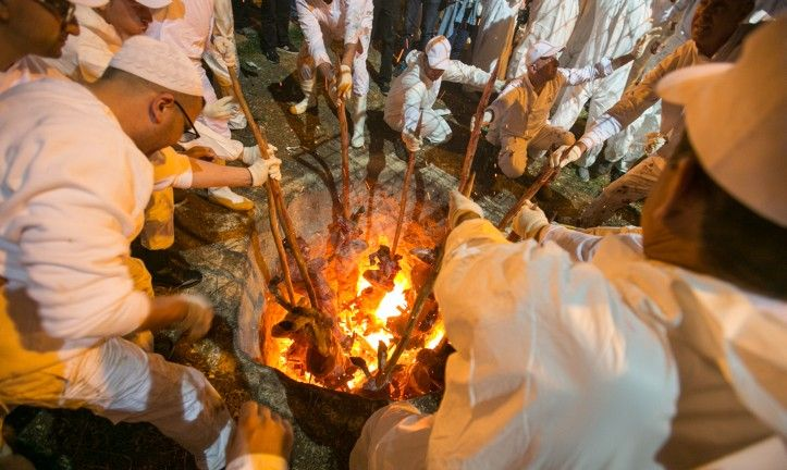 Samaritan priests insert skewered Passover sacrifices into an underground oven during the Samaritan Passover ritual on Mount Grizim, near the West Bank town of Nablus, on April 20, 2016. (Yaniv Nadav/FLASH90)