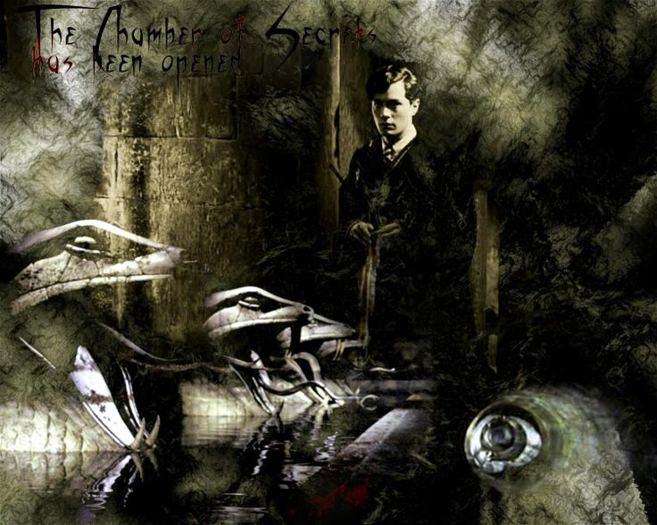 best i am lord voldemort images lord voldemort  this is the chamber of secrets tom riddle s standing around sulking in the shadows tom riddle chamber of secrets
