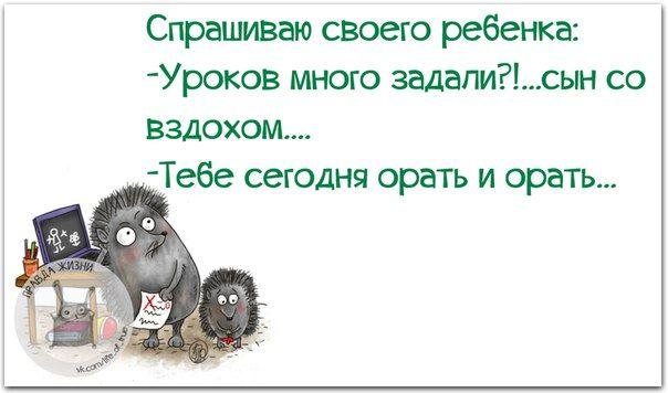 Позитивные фразки в картинках :) 24 штуки » RadioNetPlus.ru развлекательный портал