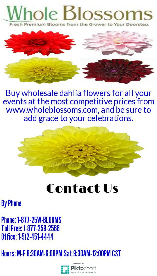 Talk about the best places to buy wholesale wedding flowers and http://www.wholeblossoms.com is the one that comes on top of the list.