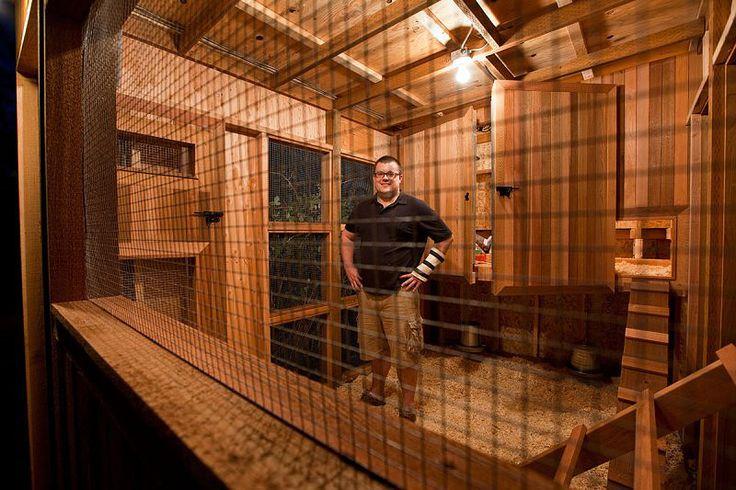 Interior of cedar coop chicken love pinterest for Chicken coop interior designs