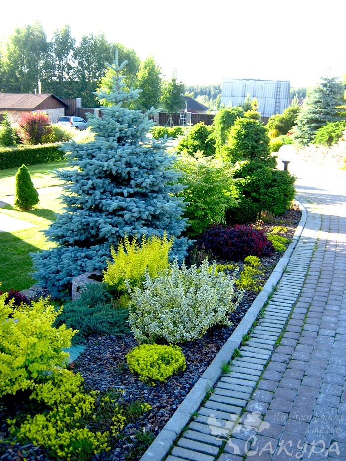 17+ Images About Corner Lot Landscaping Ideas On Pinterest