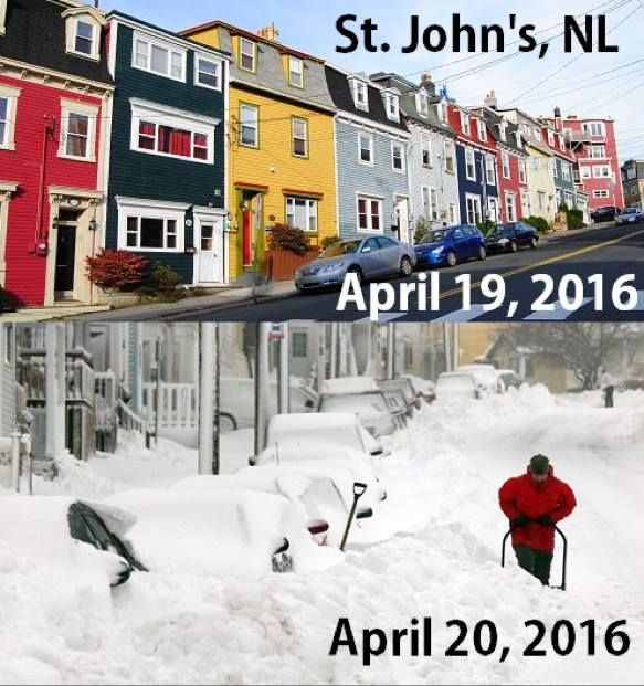 Best Rated Restaurants In Newfoundland St Johns