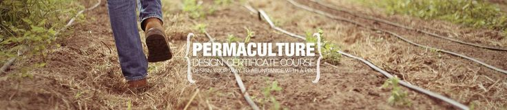Chinampas 2.0 - an Elegant Technology From the Past to Save the Future - The Permaculture Research Institute