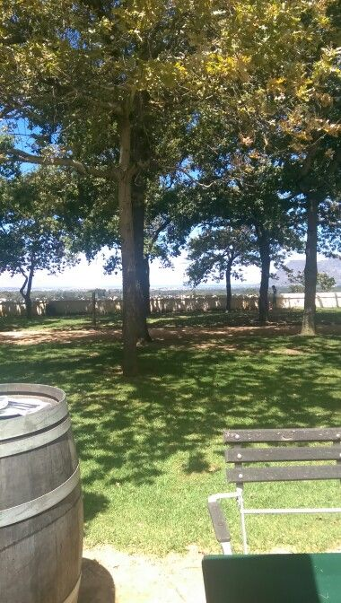 A great breakfast at Groot Constantia...