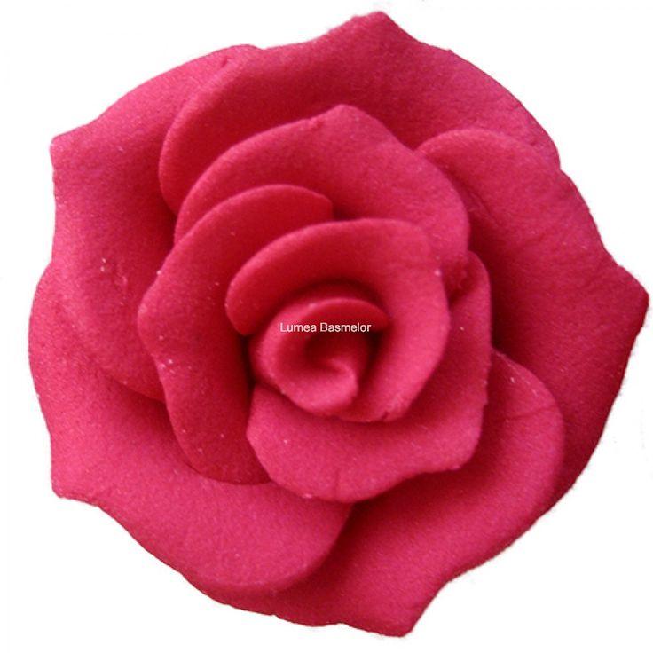 Trandafiri medii 30 buc visiniu