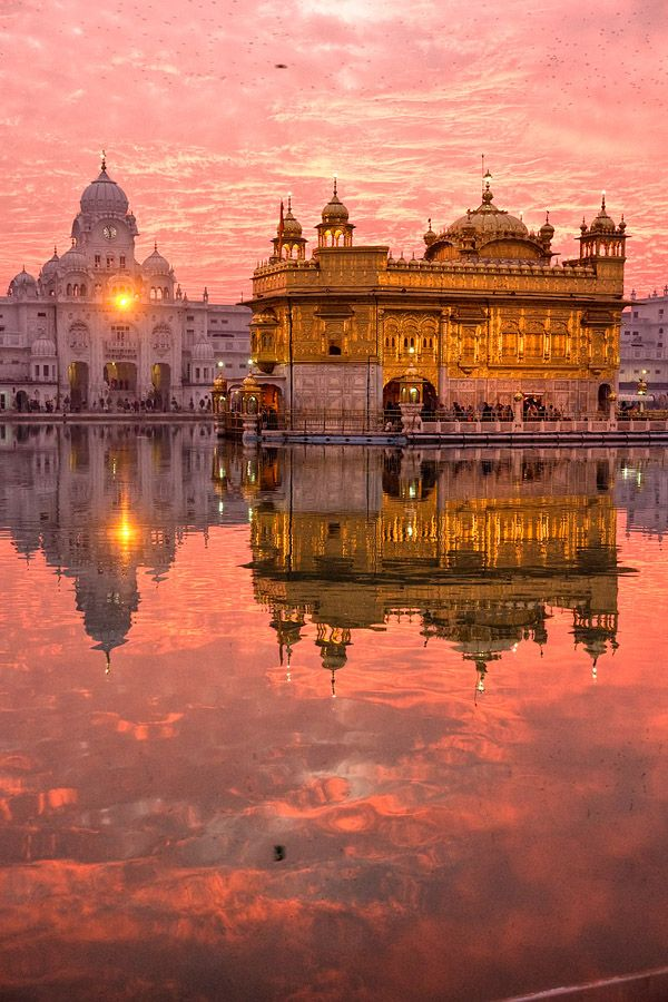 The Golden Temple, Amritsar. India. This is the most beautiful photo of the temple I have ever seen.