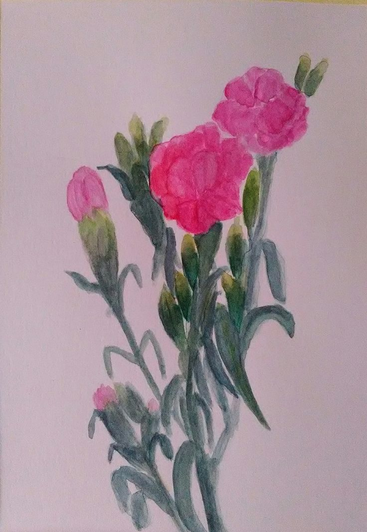 Klinčeky - akvarel 10 x 15 cm