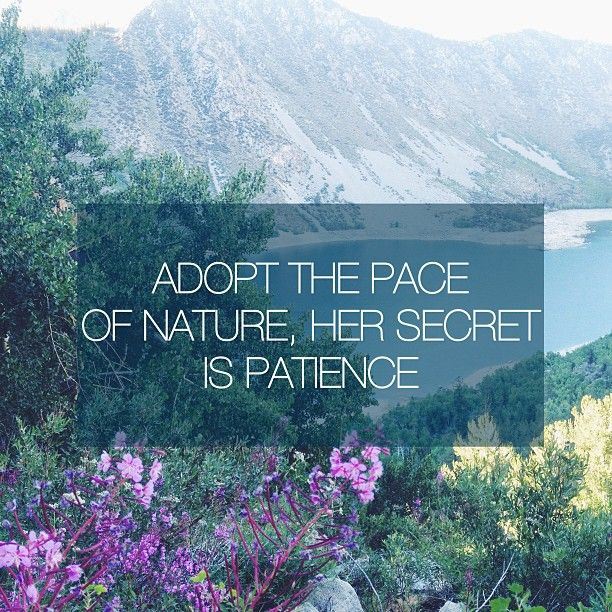 Emerson Nature Quotes: 66 Best Images About Ralph Waldo Emerson Quotes On