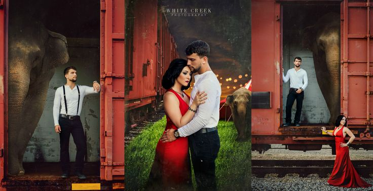 Water for Elephants #themed #couple session by White Creek #Photography