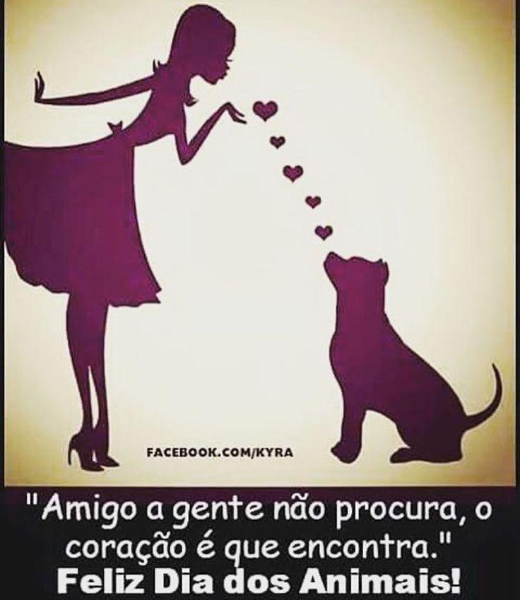 FELIZ DIA DOS ANIMAIS! <3 #petmeupet #diadosanimais #cachorro #gato #amoanimais